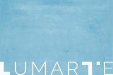 lumarte » projekt logo, papier firmowy, wizytowka, ksiega znaku