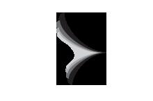 spiffy sparrow logo