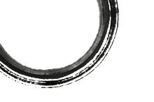 your freedom » projekt logo, papier firmowy, wizytowka, projekt strony internetowej